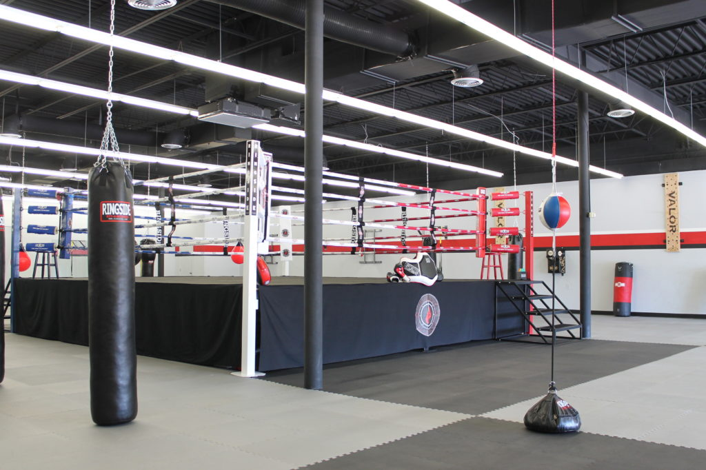 beast boxing boxing ring left side